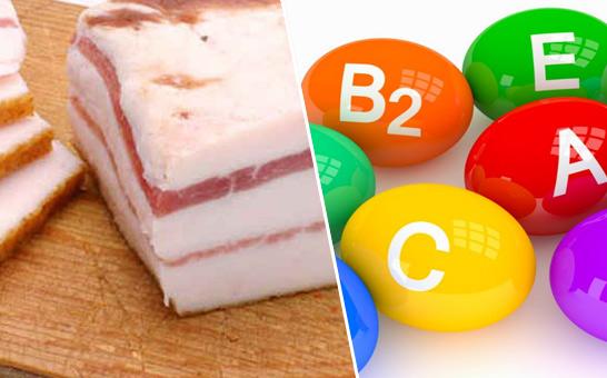 salo-vitaminy-i-mikroelementy