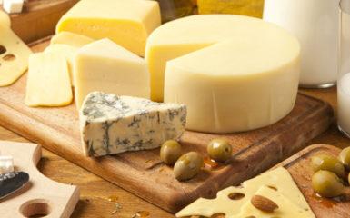 Польза и вред сыра для организма